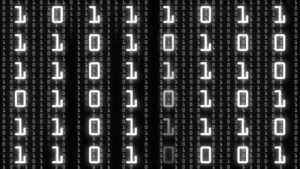 A Bit of Fun with Binary Number Basics