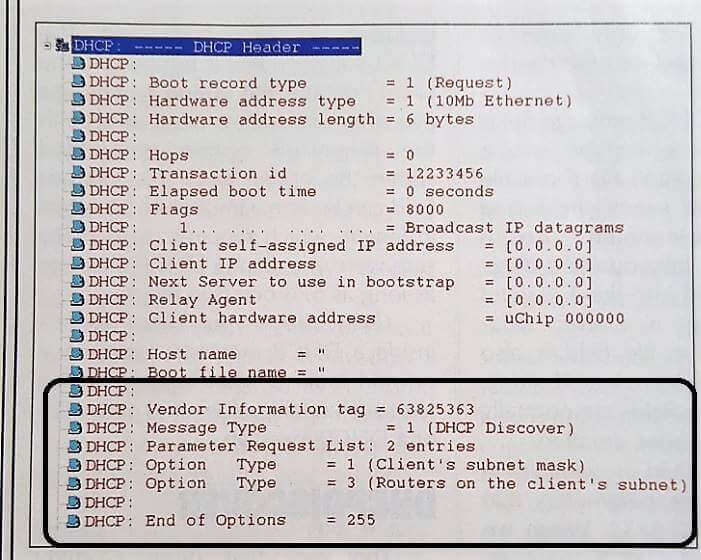 Packet sniffer decode of a DHCP message